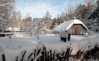 Brīvdabas muzejā 11. decembrī sākas slēpošanas sezona