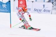 FIS Baltijas kauss 3.posms, PSL kvalifikācija, Foto: E.Lukšo