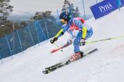 FIS Baltijas kauss 3.posms, PSL fināli, Foto: E.Lukšo