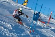 FIS Baltijas kauss 2020 paralēlais slaloms, Foto: E.Lukšo