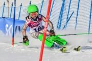 FIS Baltic Cup 2018 3. posms, jauniešu un meistaru SL, Foto: Emīls Lukšo